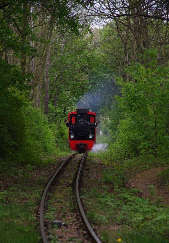 Die beliebte Parkeisenbahn, Fotos: Maximilian Ritter / www.bahnnatur.de /