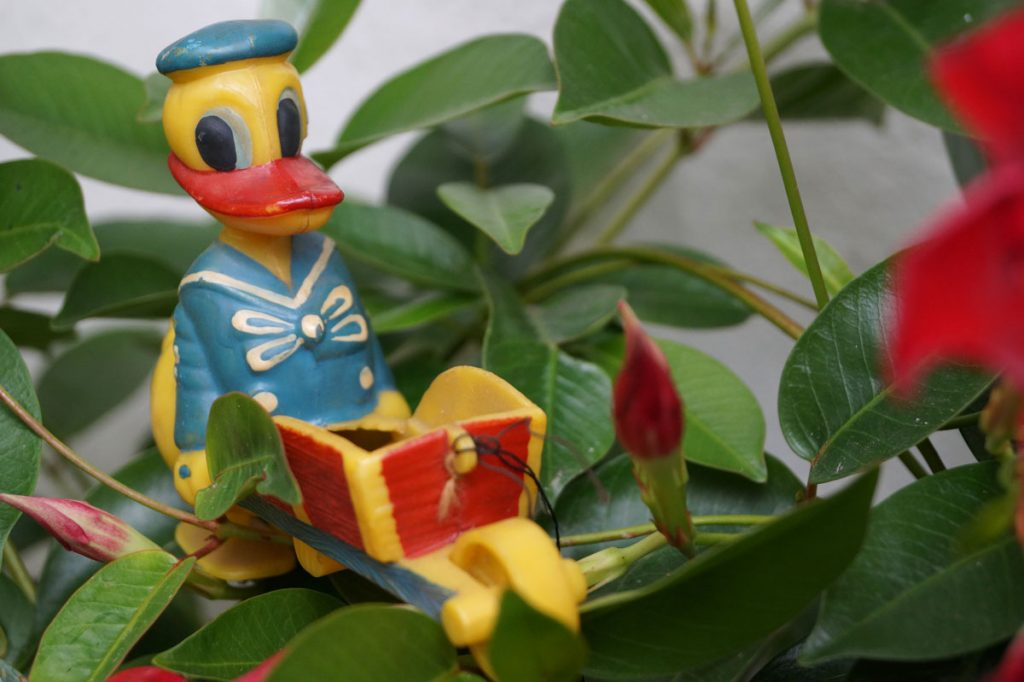 Donald Duck aus der ehemaligen DDR, Foto: André Werner