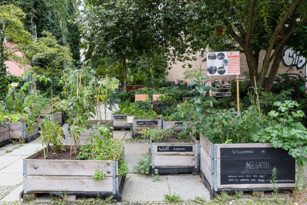 Nachbarschaftsgarten / Foto: Giovanni Lo Curto