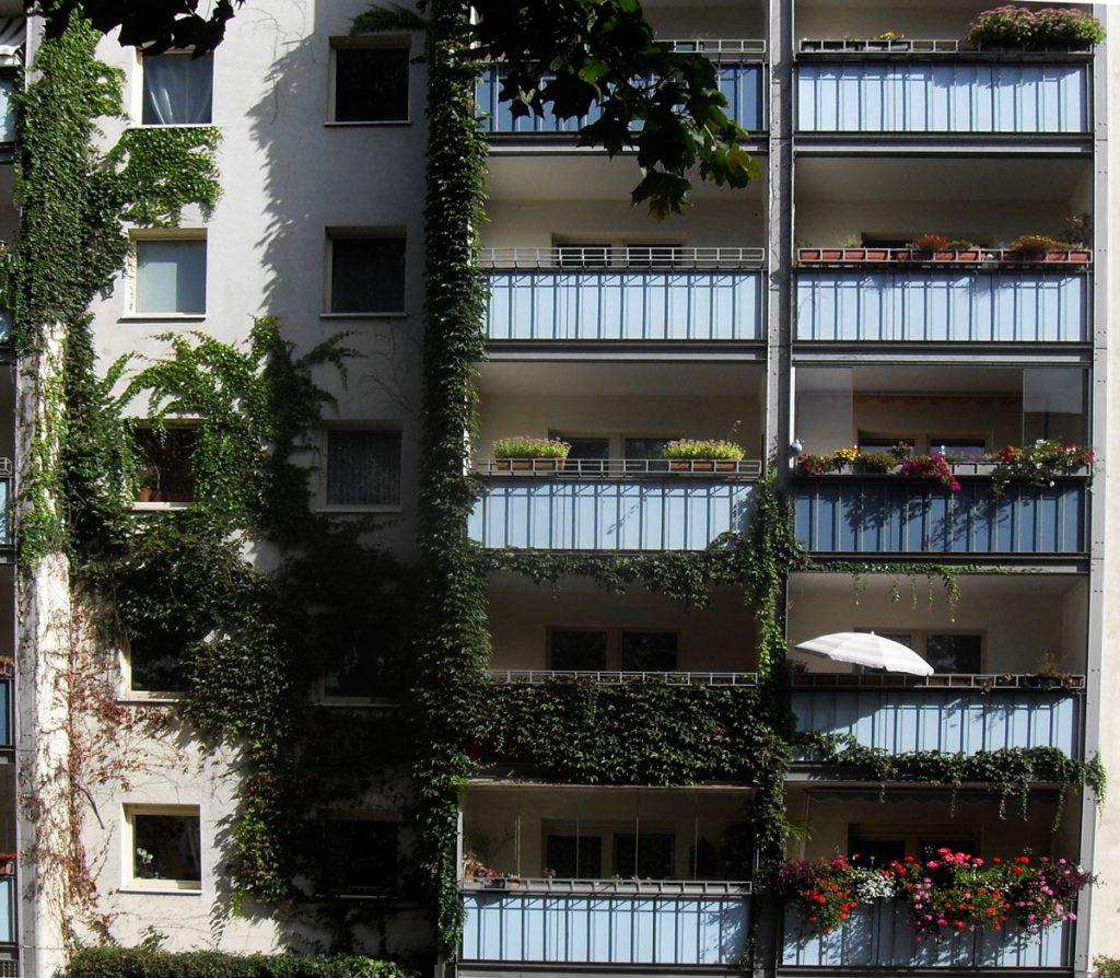 Wohnidylle in der Palisadenstraße / Foto: Detlef Krenz