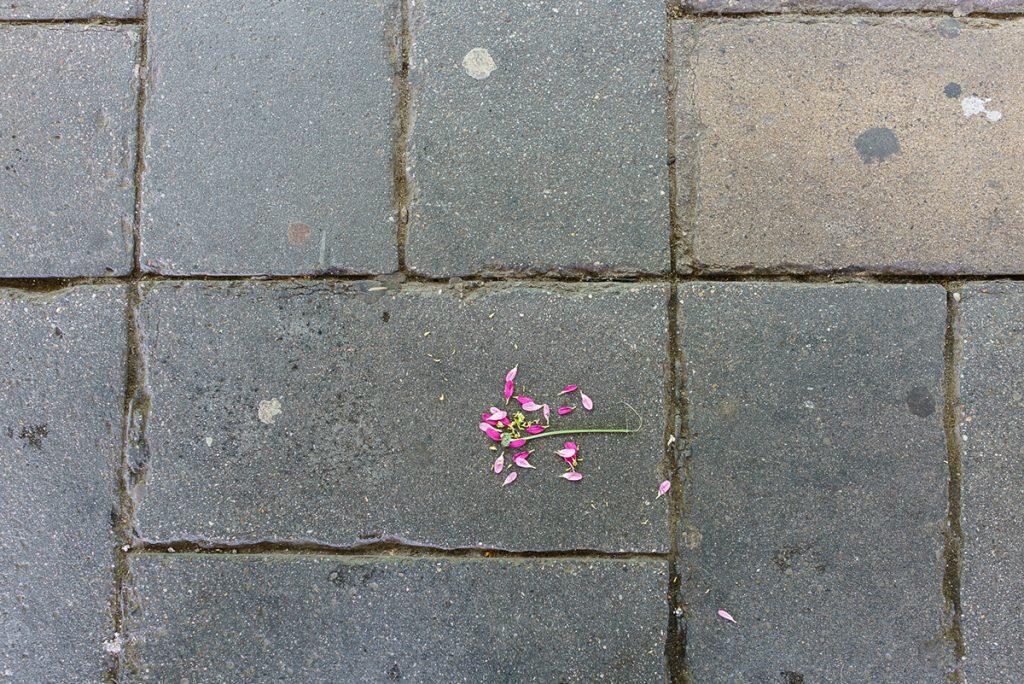SO EIN PECH: alltägliches Mißgeschick in Friedrichshain | Fotoserie: Giovanni Lo Curto